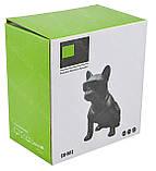 Беспроводная портативная Bluetooth колонка CoolDog CH-M12 Black, фото 7