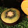 Декоративная круглая подушка пуфик Киви, фото 2