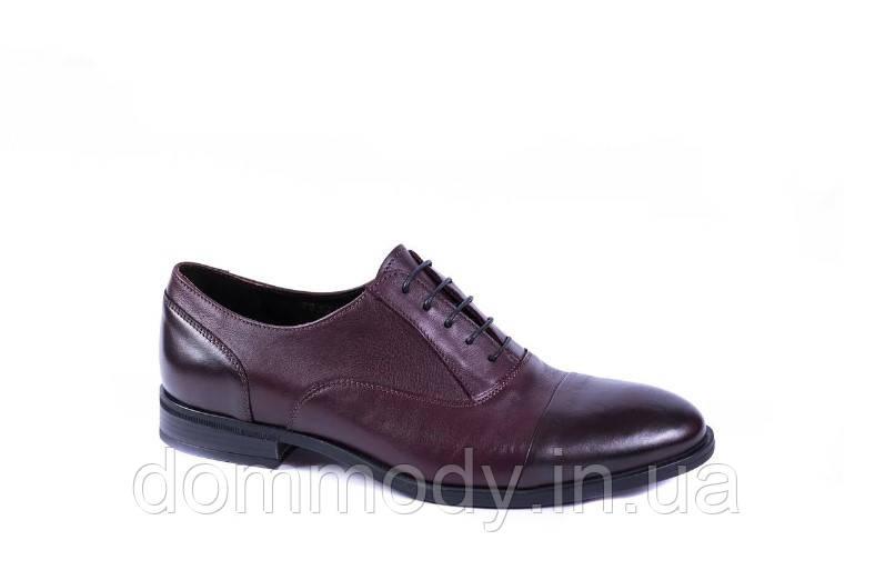 Туфлі чоловічі бордового кольору Jeri