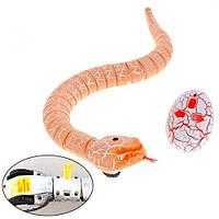 Змея Радиоуправляемая Реалистичная 38См Аккумуляторная Rattle Snake, фото 1