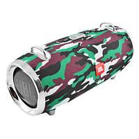 Bluetooth-колонка JBL XTEMRE 2 MINI, c функцией speakerphone, радио, camuflage