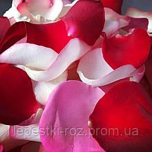 Лепестки роз ассорти