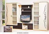 Шкаф 2Д Ск Сакура  (Світ меблів) 1000х460х2100мм, фото 2