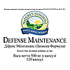 Defense Maintenance Защитная формула, NSP, США. Профилактика инфекционных заболеваний, сильный антиоксидант., фото 3