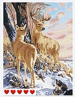 Картина по номерам Олени (цветной холст) Барви 40*50см Розпис по номерах
