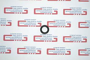 Кольцо технологического отверстия ТНВД УТН, фото 2