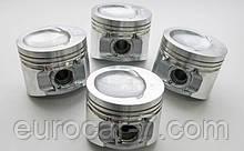 Поршня 0.25 | 0.50 | 1.00 для двигателя Nissan K21