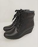 Ботинки женские кожаные черные на танкетке 144017, фото 6