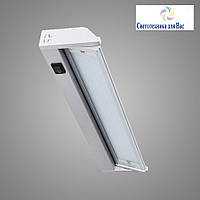 Мебельный люминесцентный поворотный светильник CH 2404 21W