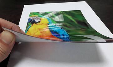 Фартук для кухни рисунок растения, завитки ПВХ панель 62 х 205 см (fl11691-5), фото 3