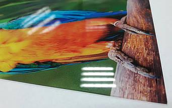 Кухонный фартук белые и синие цветы ПВХ панель 62 х 205 см (fl11692-5), фото 2