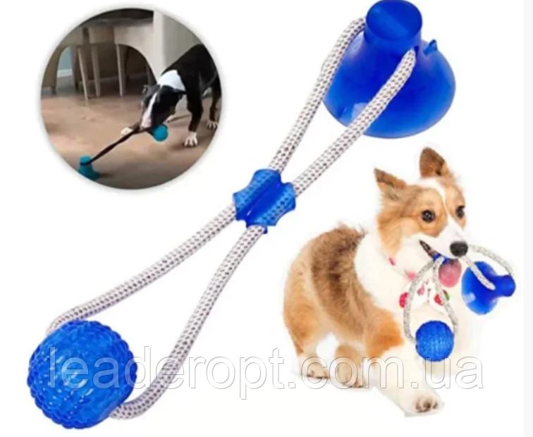 ОПТ ОПТ Іграшка для домашніх тварин, м'яч на мотузці з присоском