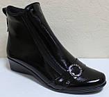 Кожаные ботинки большие размеры весна женские, обувь кожаная больших размеров от производителя модель МИ5251-2, фото 4