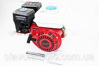 Двигатель мотоблочный в сборе под шпонку Ø19мм 6,5 л.с. 168FB