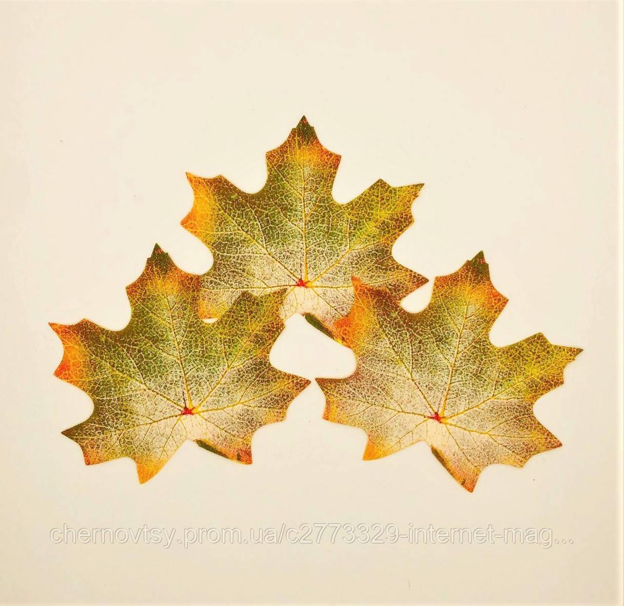 Листья клена, осенние упаковка 50 шт, тканевые, зелено-желтые 9х11.5 см, №713
