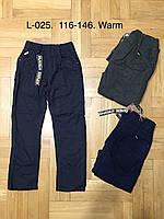 Брюки для мальчиков на флисе , размеры 116-146 р