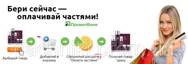 Мотобур Сraft-Tec PRO ЕА-200