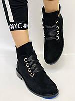 Женские осенние ботинки. на низком каблуке. Натуральная замша. Alvito. р. 36-40. Vellena, фото 3