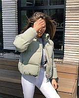 Женская модная стильная куртка короткая класическая однотонная в цветах норма подросток