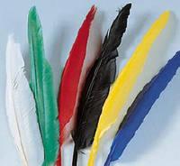 Перья цветные длинные