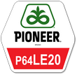 Семена подсолнечника Пионер П64ЛЕ20 Pioneer P64LE20 новинка