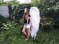 Крылья ангела 1,8*1
