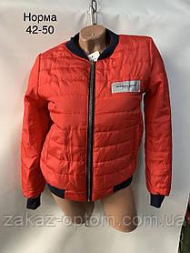 Куртка женская бомбер деми(42-50)Украина-62284