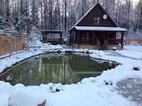 Дбайливий догляд за ставком в зимову пору