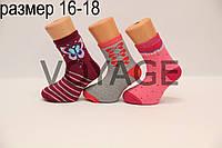 Детские носки махровые для малышей п/э ТР  16-18  м387(4-6) девочка