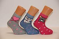 Детские носки махровые для малышей п/э ТР  14-16  м387 мышка,сердце,котик