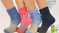Жіночі шкарпетки махрові з коміром з бавовни ОР КЛ op 02