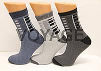 Жіночі шкарпетки махрові тэрмо JNLEP jle 33