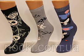 Детские носки махровые новогодние  Стиль Люкс Ходок 18-20  517,518,519