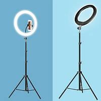 Кольцевая светодиодная лампа для селфи 45 см RGB со штативом на 2м
