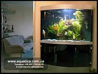 Аквариумы угловые с моллированным стеклом ТМ Акватика