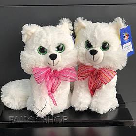 "Іграшка мяка ""Котик"", білий, Мягкая игрушка ""Котик"" В222"