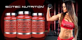 Снижение цен на протеины Scitec Nutrition Whey Professional !