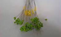 Тычинки /гортензий зеленые (код 01570)