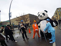 Panda in the USA