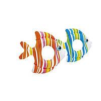 Надувной круг Рыбка 59223 Intex. В упаковке 36 штук