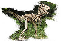 Игрушка из дерева Динозавр Велоцираптор 3-D пазлы конструктор для детей и взрослых