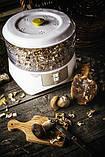 Сушильный аппарат для грибов, фруктов и трав Adler AD 6654, фото 4