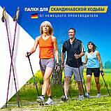 Палки для скандинавской ходьбы NORD STICKS телескопические, фото 3
