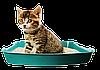 Выбираем лучший наполнитель для кошачьего туалета!