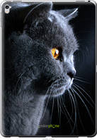 "Чехол на Apple iPad Pro 12.9 Красивый кот ""3038u-362-42331"""