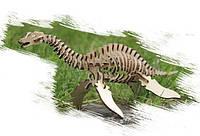 Игрушка из дерева Динозавр Плезиозавр 3-D пазлы конструктор для детей и взрослых