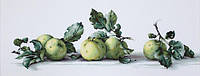 Набор для вышивки крестом Luca-S B2259 Натюрморт с яблоками