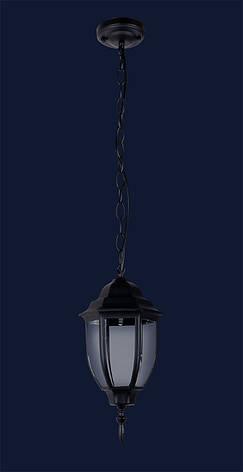 Черный уличный подвесной садовый светильник Levistella 767V3802-S-PL BK, фото 2