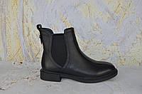 Кожаные ботинки челси женские BROCOLY