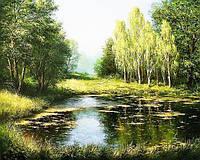 Картина рисование по номерам Чарівний діамант Лесное озеро РКДИ-0158 40х50см набор для росписи, краски, кисти,, фото 1